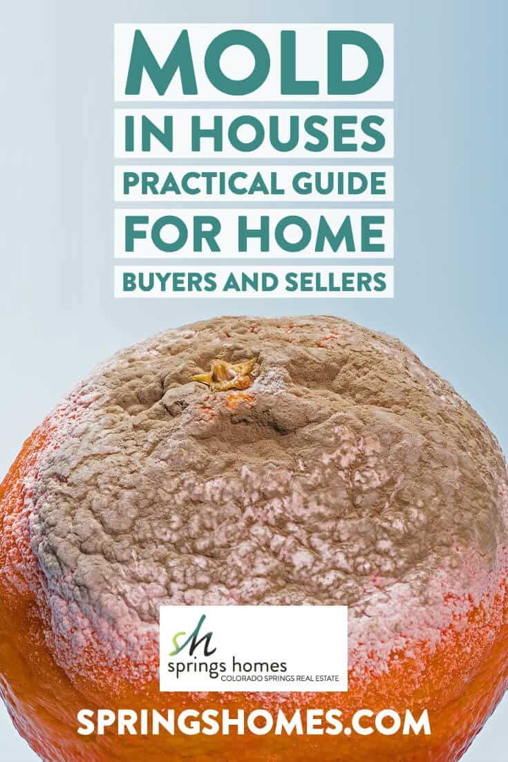 Mold in Houses - Practical Guide For Home Buyers and Sellers