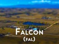 Falcon Colorado