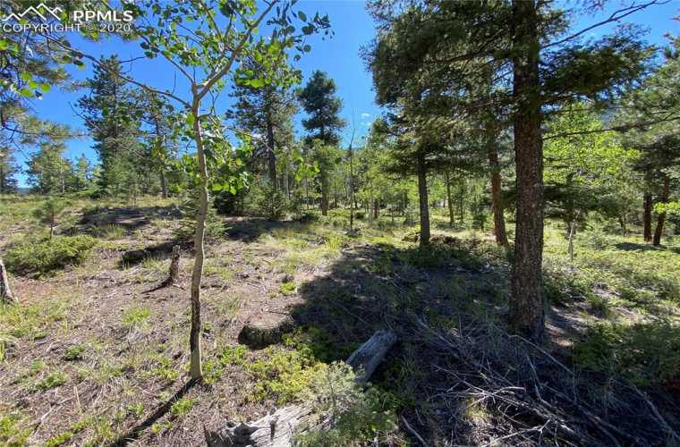 156 Big Bear Road Manitou Springs Colorado 80829, ,Land,For Sale,Big Bear,9526495