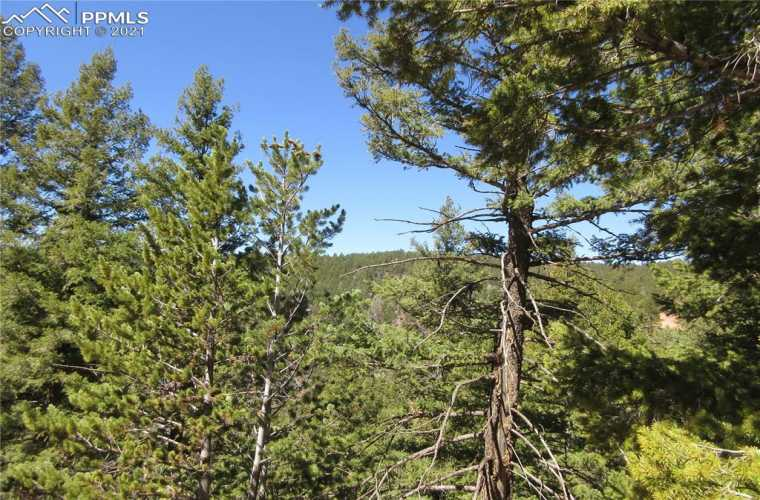 View is to the west.  This beautiful 2.55-acre lot has a wonderful west-facing view ready to build your dream home in the mountains in the highly sought-after gated community of Woodmoor Mountain.