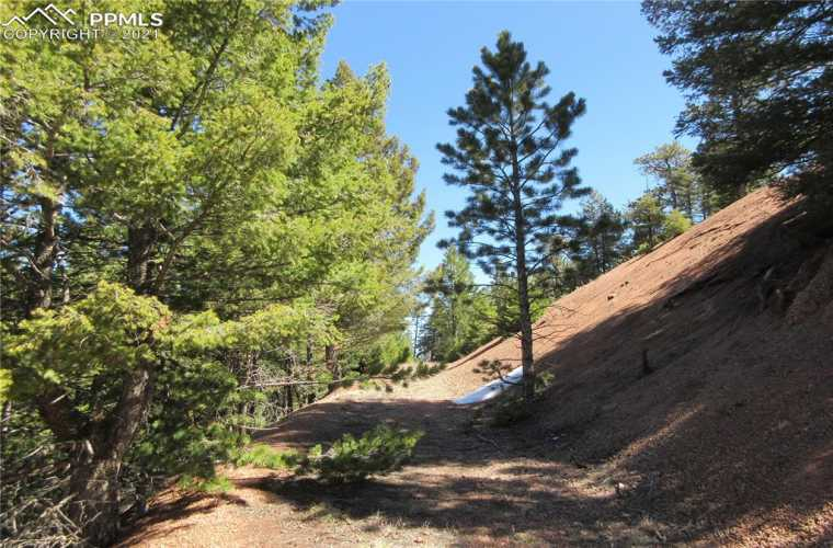 Looking up  the access driveway and to the northeast.  This beautiful 2.55-acre lot has a wonderful west-facing view ready to build your dream home in the mountains in the highly sought-after gated community of Woodmoor Mountain.