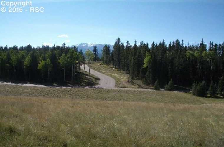 307 Pinaceae Heights Divide Colorado 80814, ,Land,For Sale,Pinaceae,5166066
